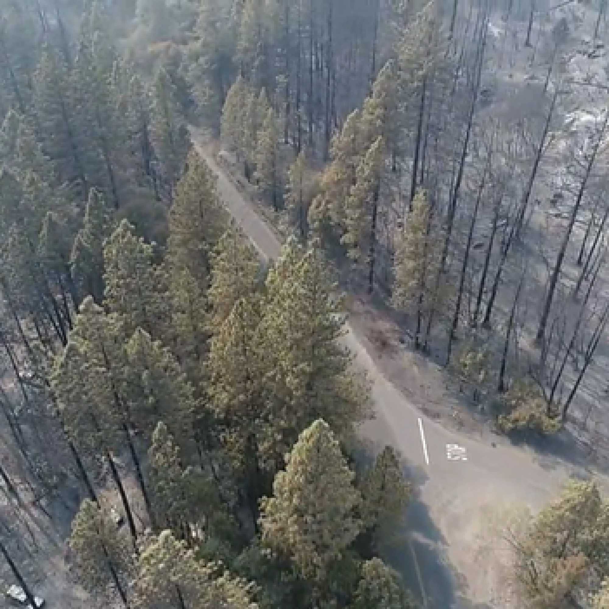 North Complex Fire: Drone Damage Assessment